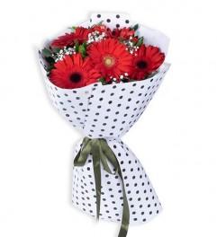 5 Kırmızı Gerbera Çiçek Buketi